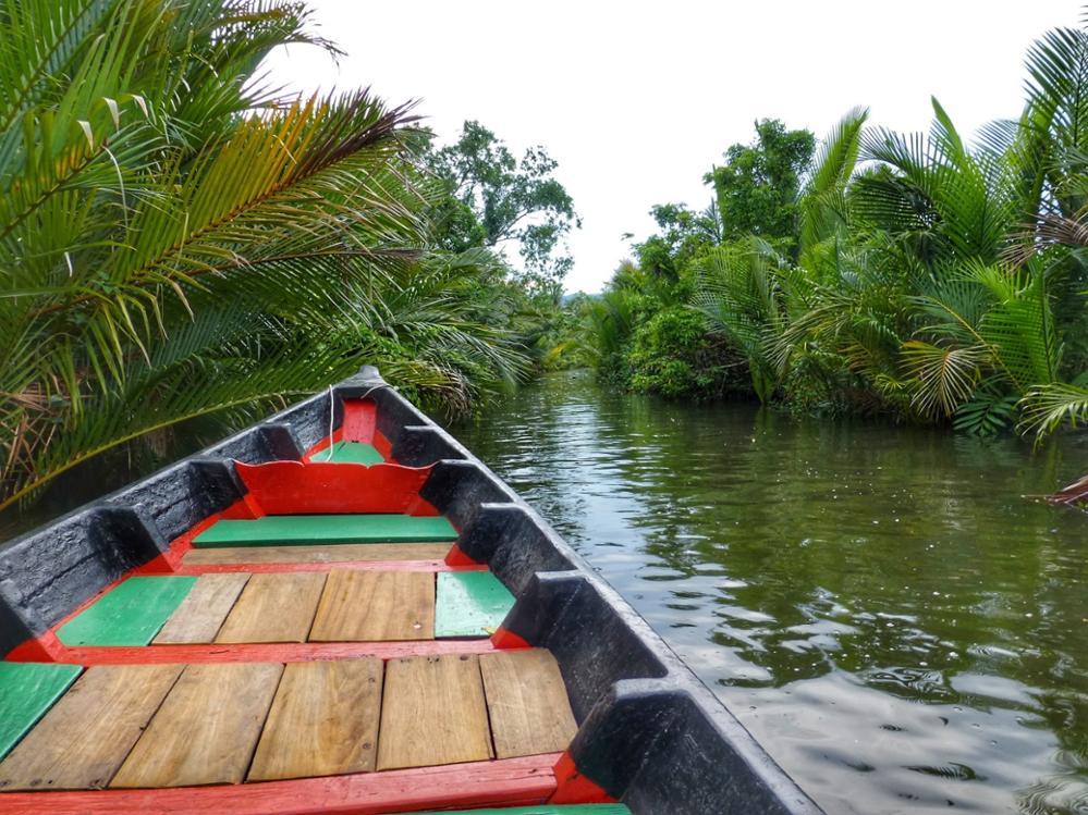 Profiter de la nature de Kampot en kayak !