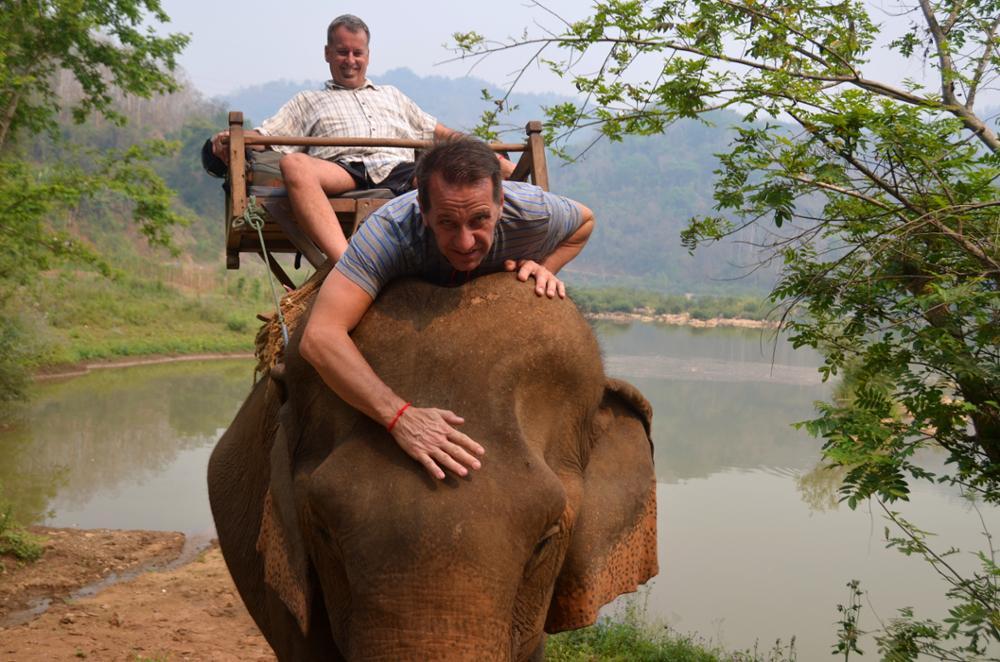 Voilà pourquoi il ne faut pas monter sur le dos des éléphants...