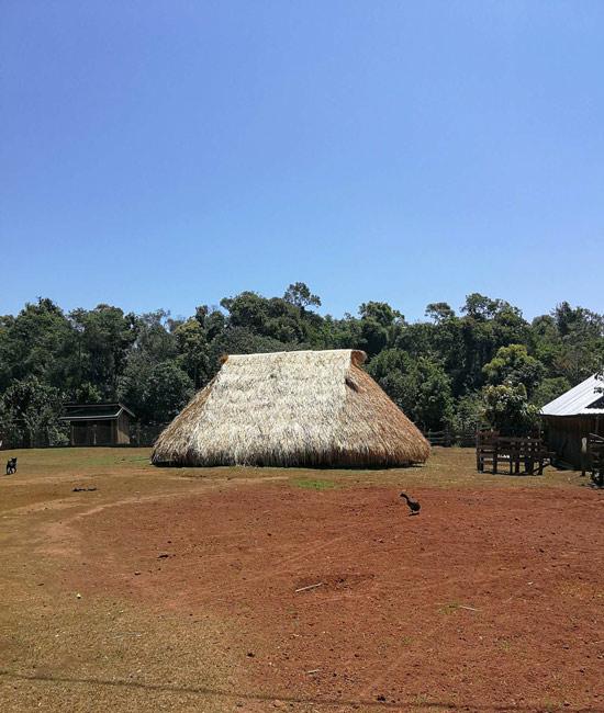 Maison traditionnelle en toit de paille dans un village indigène à Mondulkiri